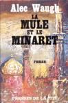 La mule et le minaret